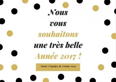 nous-vous-souhaitonsune-tres-belleannee-2017